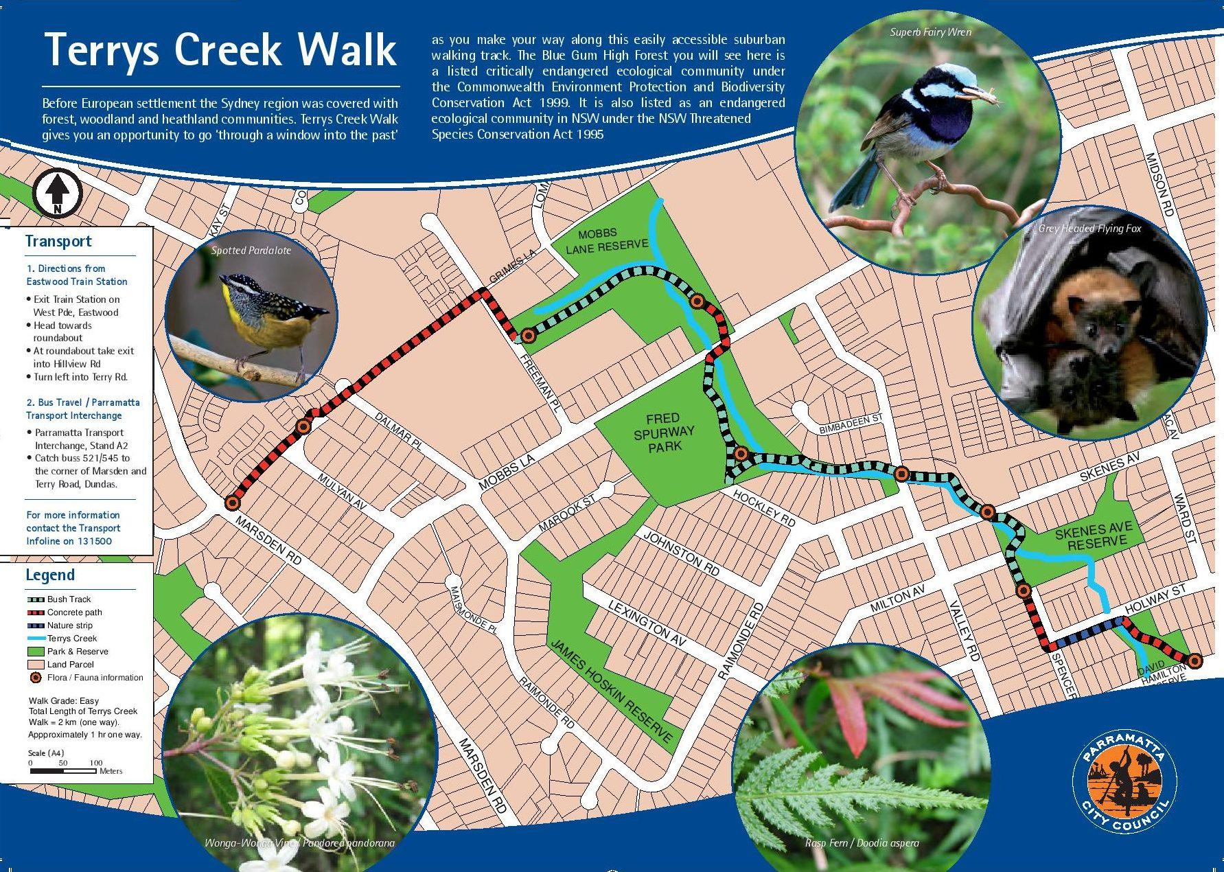 Terrys Creek Bushwalk