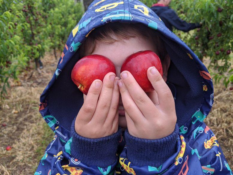 Canoelands Orchard