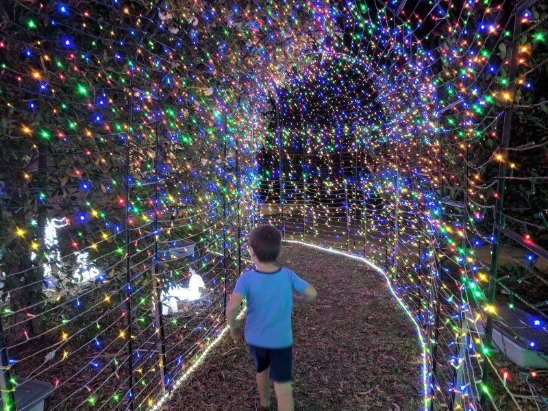 Christmas Lights 5 Dorset Avenue