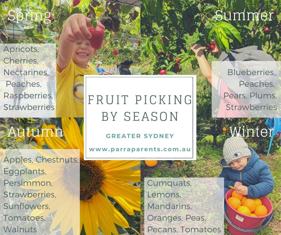 Pick Your Own Fruit Calendar Fruit Picking By Season