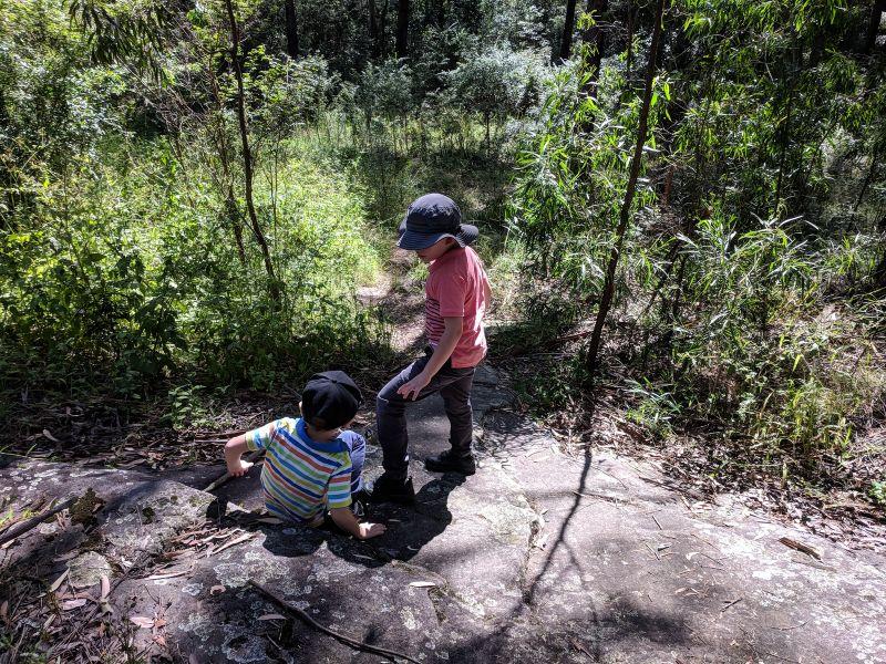 walking trails bluey Hazel Ryan Oval