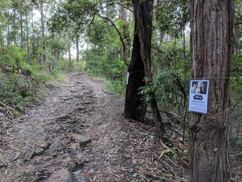 star wars walking trail vineyard creek oatlands telopea