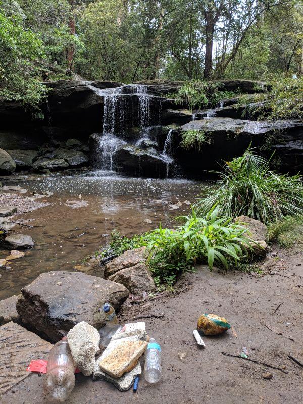 Balaka Falls Carlingford litter