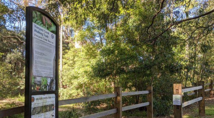 walking trail bush riddles vineyard creek reserve