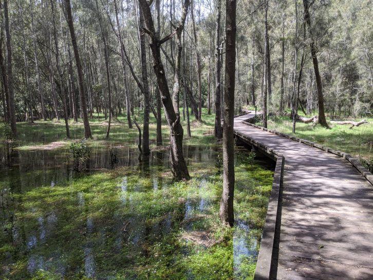 Crosslands Reserve Hornsby Heights