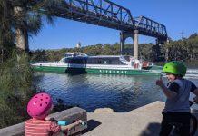 Parramatta River Rydalmere Bridge